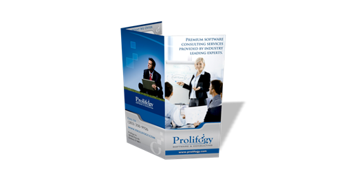 Prolifogy Software Consulting